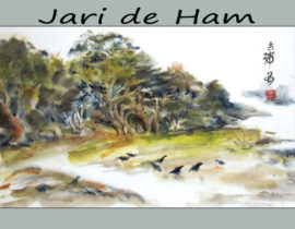Jarien de Ham, Featured Artist for June 2017